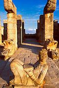 MEXICO, MAYAN, YUCATAN Chichén Itzá; Temple of Warriors