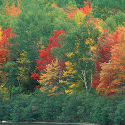 South Branch Pond, Baxter State Park, ME. Beautiful fall colors. Northern Forest.