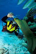 diver and green moray eel, Gymnothorax funebris,<br /> at Stingray City, Grand Cayman,<br /> Cayman Islands ( Caribbean Sea )   MR 172