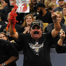 16 January 2010:  A New Orleans Saints fan celebrates in the stands during a 45-14 win by the New Orleans Saints over the Arizona Cardinals in the 2010 NFC Divisional Playoff game at the Louisiana Superdome in New Orleans, Louisiana.