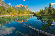 Mount Lorette and the Canadian Rocky Mountains reflected in Lorette Ponds<br />
