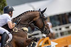 Greve Willem, NED, Zypria S NOP<br /> Nederlands Kampioenschap Springen<br /> De Peelbergen - Kronenberg 2020<br /> © Hippo Foto - Dirk Caremans<br />  09/08/2020