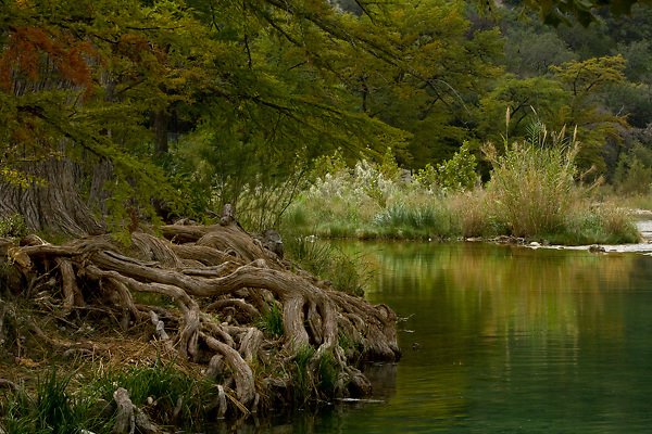 Slow moving curve in the Frio River in the Texas Hill Country