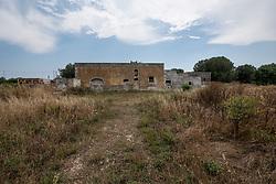Sava, Taranto. Strada con uliveto in periferia del paese