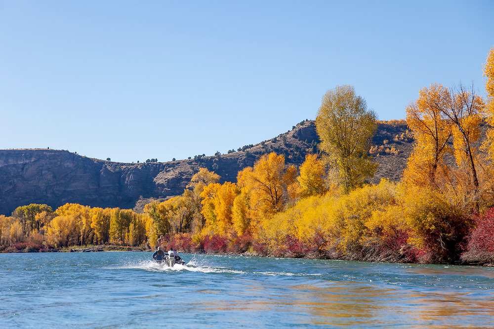 Jet boat fisherman on the South Fork of the Snake River on an electric fall day in Eastern Idaho.  Licensing and Open Edition Prints.