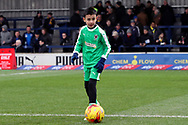 Mascot during the EFL Sky Bet League 1 match between AFC Wimbledon and Barnsley at the Cherry Red Records Stadium, Kingston, England on 19 January 2019.