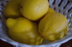 Lemons at Nana's House, Castine, Maine, US