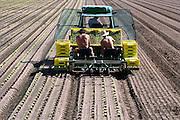 Nederland, Ubbergen, 30-8-2016Waterkerskwekerij de Klispoel aan de voet van de stuwwal bij Nijmegen. Ook sla wordt verbouwd. Voor de laatste keer dit jaar worden jonge slaplantjes geplant .Voor het kweken van deze bladgroente is veel en schoon water nodig. Dit krijgt het bedrijf via de natuurlijke ondergrondse bronnen en beekjes die vanuit de heuvel naar beneden stromen.  Ook vanuit grote diepte wordt water opgepompt.Foto: Flip Franssen