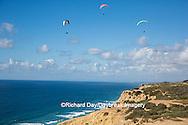 62995-00612 Hang Gliders at Torrey Pines Gliderport La Jolla, CA