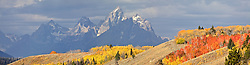 """A panoply of fall colors on the hills east of the Grand Tetons by Grand Teton National Park in the Bridger Teton National Forest outside of Jackson Wyoming.<br /> <br /> For production prints or stock photos click the Purchase Print/License Photo Button in upper Right; for Fine Art """"Custom Prints"""" contact Daryl - 208-709-3250 or dh@greater-yellowstone.com"""