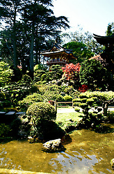California: San Francisco, Japanese Tea Garden, photo: sfchin105.Photo copyright Lee Foster, www.fostertravel.com , 510/549-2202, lee@fostertravel.com