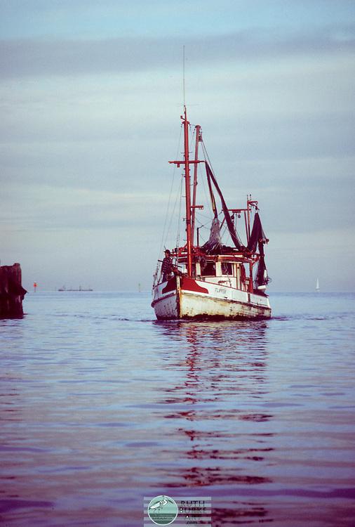 Shrimp Boat Coming In From Bay