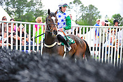 24  March, 2012: Willie Mccarthy and TIZALLABOUTME