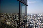 Tokyo seen from a high rise building
