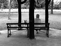 A dog and its owner appear to not be on the best of terms as they sit in the park