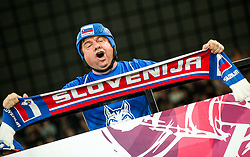 Supporters of Slovenia during the 2017 IIHF Men's World Championship group B Ice hockey match between National Teams of France and Slovenia, on May 15, 2017 in AccorHotels Arena in Paris, France. Photo by Vid Ponikvar / Sportida