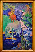 France, Paris (75), zone classée Patrimoine Mondial de l'UNESCO, Musée d'Orsay, Le Cheval blanc, Paul Gauguin // France, Paris, Orsay museum, Le Cheval blanc, Paul Gauguin