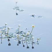 Femal nature Photography