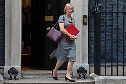 © Licensed to London News Pictures. 12/06/2018. London, UK. Leader of the House of Commons Andrea Leadsom leaves 10 Downing Street after the Cabinet meeting. Photo credit: Rob Pinney/LNP