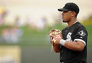SURPRISE, AZ - MARCH 06:  Jose Abreu #79 of the Chicago White Sox looks on against the Kansas City Royals on March 6, 2014 at The Ballpark in Surprise in Surprise, Arizona. (Photo by Ron Vesely)   Subject: Jose Abreu