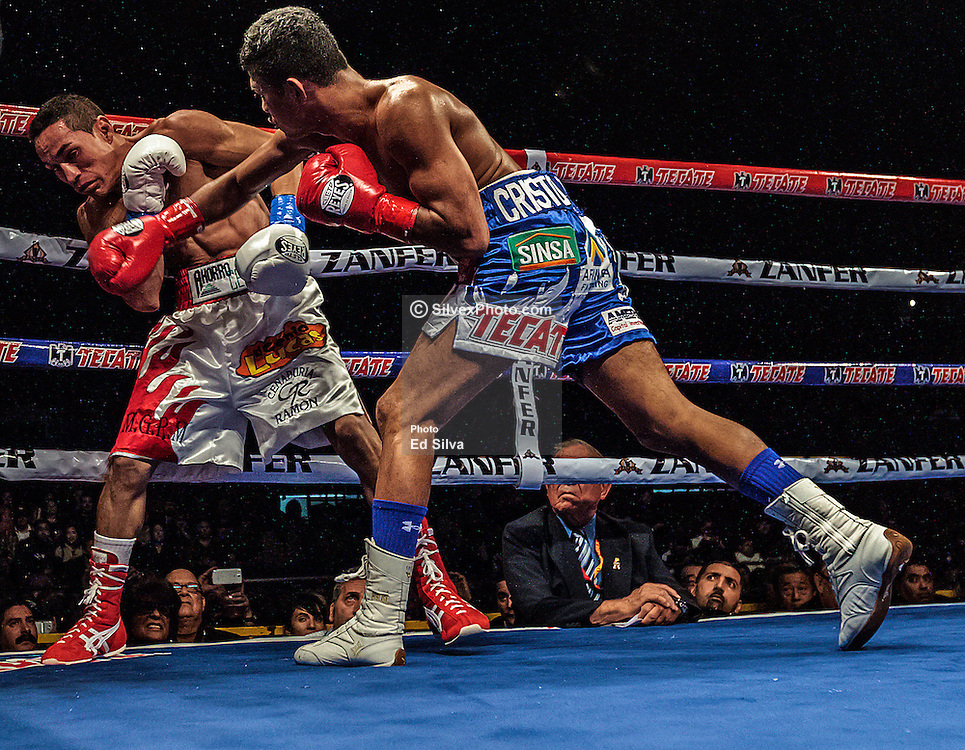 LOS ANGELES,CA - NOV 17: Junior flyweight Roman ?Chocolatito? Gonzalez successfully defended his WBA world title belt by unanimous decision - 118-110, 116-112 and 116-112 - against Juan Francisco Estrada at the Los Angeles Sports Arena in Los Angeles, CA. Byline and/or web usage link must  read PHOTO: © Eduardo E. Silva/SILVEX.PHOTOSHELTER.COM.