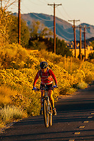 Bicyclists riding on a bike trail on Tramway Boulevard, Albuquerque, New Mexico USA