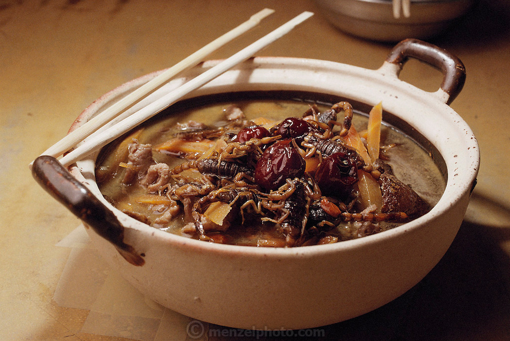 A bowl of scorpion soup in Guangzhou, China made by Li Shuiqi, a 26 year-old scorpion seller, and his roommate, You Zhiming, 25. The pair of salesmen was raising more than 10,000 scorpions in their apartment to sell in markets in Guangzhou, China. Scorpions in China are useful as both food and traditional Chinese medicine. Image from the book project Man Eating Bugs: The Art and Science of Eating Insects.