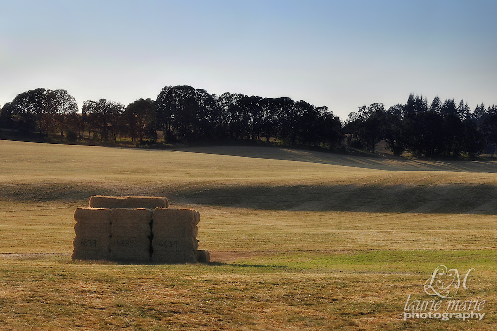A stack of hay bales in a rolling field