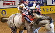 """15 DECEMBER 2002 - LAS VEGAS, NV, USA: Jared Lavergne, of Ville Platte, LA, competes in the bareback riding competition in the 10th round of the National Finals Rodeo in the Thomas and Mack Center in Las Vegas, NV, December 15, 2002. The NFR is the """"Super Bowl"""" of rodeo. Only the top 15 cowboys from each event are invited to participate in the NFR, which runs for 10 days every December. All ten performances of the NFR sell out every year. PHOTO BY JACK KURTZ"""