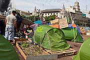 "Garden and campers at protest camp at Placa de Catalunya, Barcelona, Spain. The signs read: ""Animals and music will make you a better person; put a dog and a flute in your life"". The square has been relatively quiet since police attacked and beat protestors on May 27 2011. quiet since police attacked and beat protestors on May 27 2011."