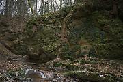 Tildurga stream and sandstone cliffs along it in forest, Gauja National Park (Gaujas Nacionālais parks), Latvia Ⓒ Davis Ulands | davisulands.com