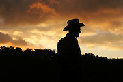 Farmer Joel Salatin is silhouetted in the morning light while tending to his chickens at the Polyface Farm October 20, 2006 in Staunton, Va. ...Photo by Andrew B. Shurtleff, Freelance. farmer