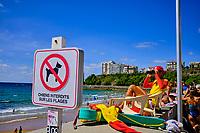 France, Pyrénées-Atlantiques (64), Pays Basque, Biarritz, surfeurs sur la plage des Basques // France, Pyrénées-Atlantiques (64), Basque Country, Biarritz, surfers on the Plage des Basques beach