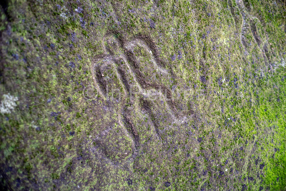 Stone carvings at the archaeological site of Hikokua near the village of Hatiheu, Nuku Hiva, Marquesas Islands, French Polynesia. Discovered by the archaeologist Robert Suggs in 1957, it dates from around AD 1250 and was in use until the 1800s.