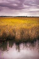 Marshlands on the banks of the river Alde near Snape in Suffolk, England, UK