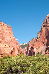 USA Utah, Zion National Park. Kolob Canyons in the northwest corner of the park.