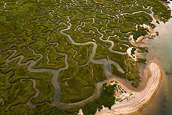 Intricate channels formed by countless tides create a safe haven for wildfowl and a plethora of sea creatures. at West Mersea, Mersea Island, near Colchester in Essex. West Mersea, Essex, July 11 2019.