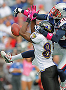 Oct 4, 2009, Foxborough, Massachusetts, USA;  Defensive Back Darius Butler of the New England Patriots breaks up a pass intended for Baltimore Raven receiver Derrick Mason as the Patriots defeated the Ravens 27-21.