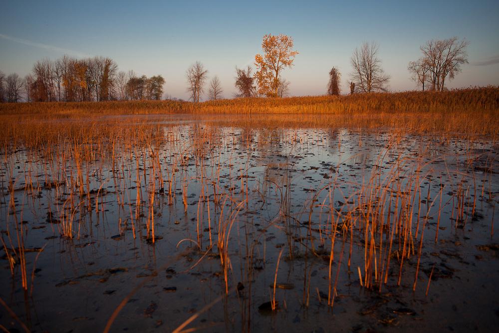 Duck Camp Monday, Oct. 22, 2012, in Au Gres, Michigan..Photo by Scott Morgan 2012