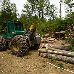 A skidder pulls hardwood logs to a log yard in Eden, Vermont.  Green Mountains.