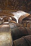 barrel aging cellar domaine comte senard aloxe-corton cote de beaune burgundy france