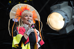 © Licensed to London News Pictures . 08/08/2015 . Siddington , UK . Toyah Wilcox on the stage at the Rewind Festival of 1980s music , fashion and culture at Capesthorne Hall in Macclesfield . Photo credit: Joel Goodman/LNP