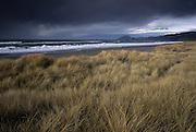 Storm clouds and beach grass at Nesika Beach along the Oregon Coast. Southern Oregon Coast