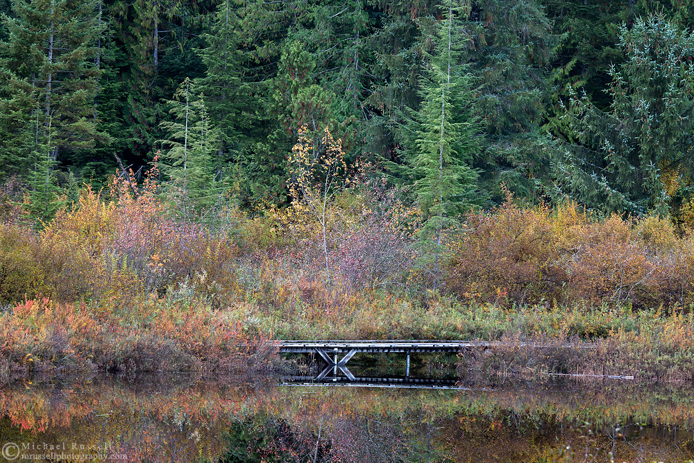 Small bridge on the boardwalk around Rolley Lake at Rolley Lake Provincial Park in Mission, British Columbia, Canada.