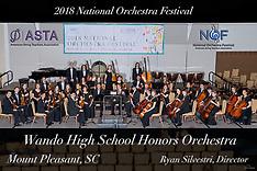 Wando High School Honors Orchestra