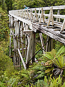 Historic Edwin Burn Viaduct, built for a logging tramway in 1916, now attracts hikers (trampers) on the Tuatapere Hump Ridge Track, in Fiordland National Park, South Island, New Zealand. Due to lack of sturdy structural lumber from native New Zealand forests, the viaduct was built from Australian hardwood to support logging trains. Published in 2009 in Sunday Times Travel Magazine, London, UK.