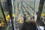 A John Deere Corn picker in a corn field ready for harvesting. as seen from within the harvester. Photographed in Israel, Golan Heights