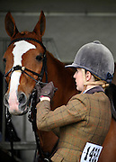© under license to London News Pictures. LONDON, UK  11/05/2011. A rider prepares her horse. The Royal Windsor Horse Show in the private grounds of Windsor Castle today (11 May 2011). Photo credit should read Stephen Simpson/LNP.