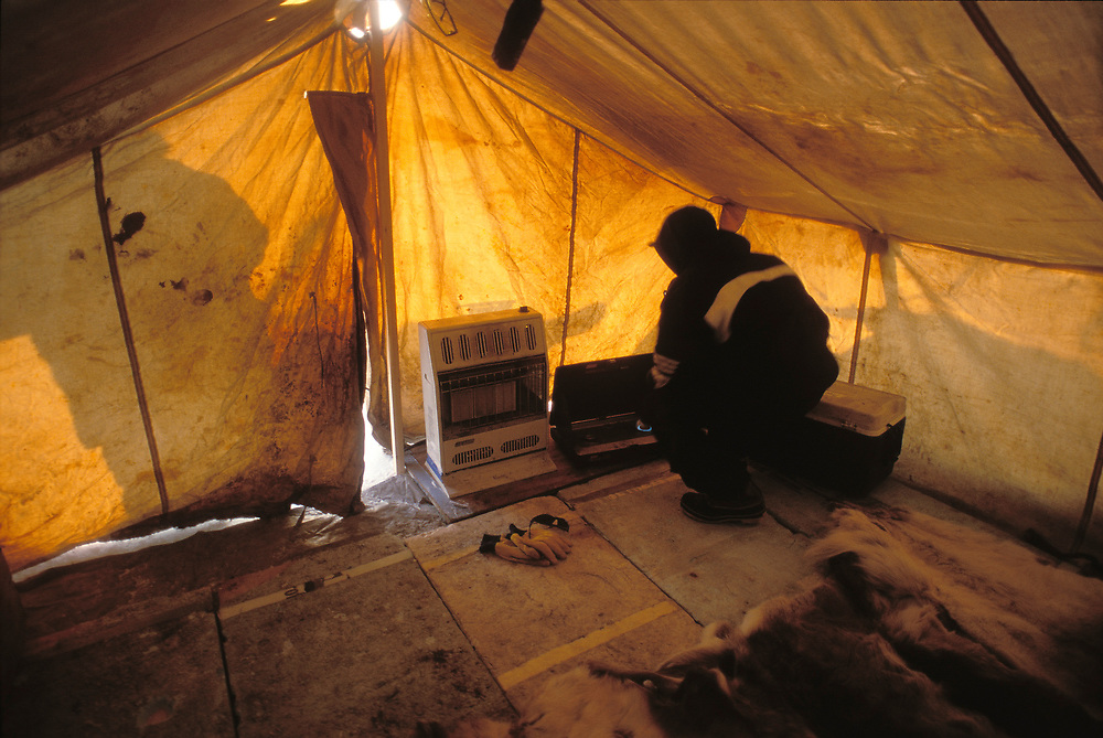 Barrow, Alaska, Native whalers set up camp nearer the edge of the icepack where they will stay for the duration of the hunt