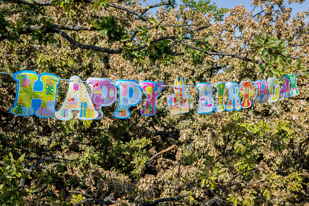 Detail of a Happy Birthday message stretched across the branches of a fallen oak tree, the remnants of a birthday party in Brockwell Park, on 6th August 2018, in London, England.